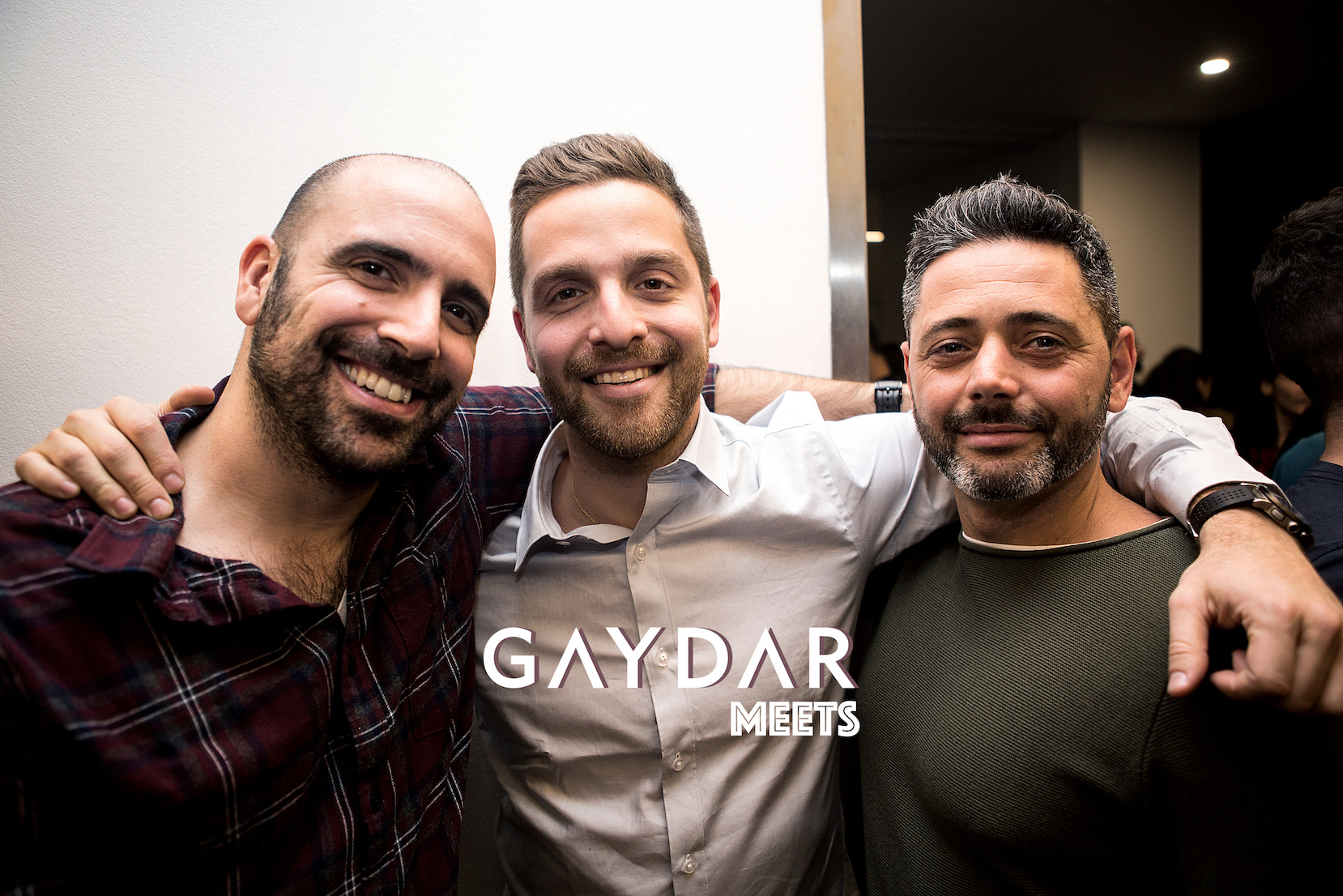 Define gaydar